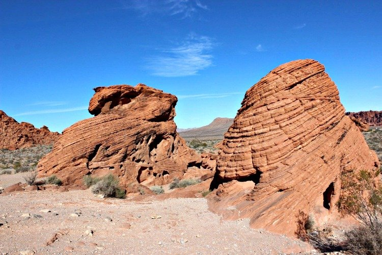 Beehives at Valley of Fire