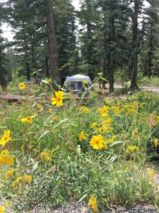 Cedar Canyon Campground