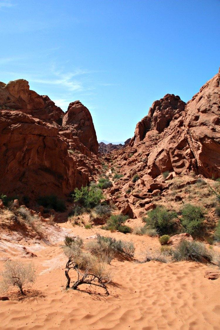 Rainbow Vista at Valley of Fire 3